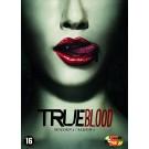 True Blood Seizoen 1