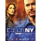 CSI New York Seizoen 3.1