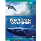 BBC Earth - Het Leven van Dolfijnen en Walvissen