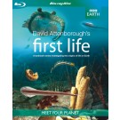 BBC Earth: David Attenborough's First Life (Blu-ray)