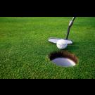 Stichting Vip-Golf